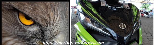 New jupiter MX & mata elang.. siapa mirip apa ?