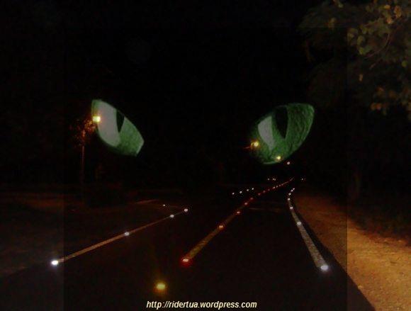 jalan malam
