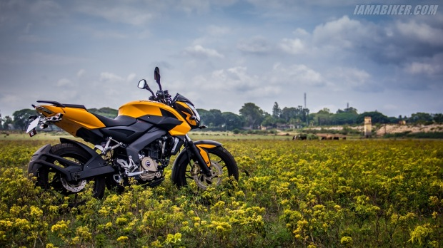Pulsar Yellow 200NS(wallbeam.com)