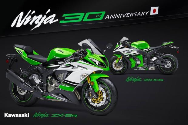 Kawasaki-30th-Anniversary-of-Ninja-300