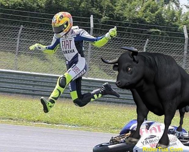 Valentino Rossi diseruduk banteng lari