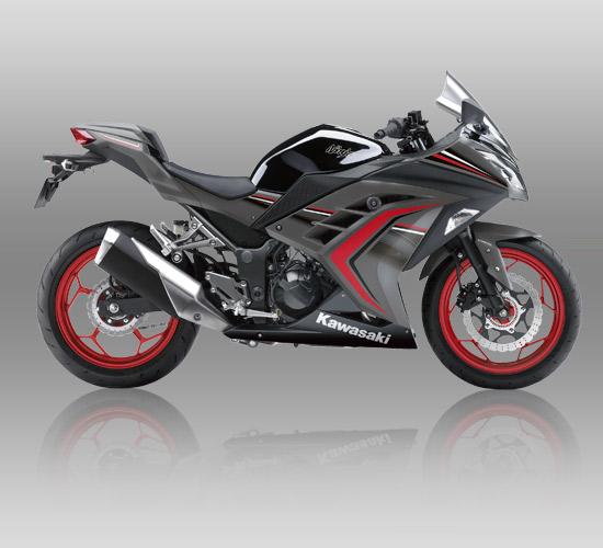 Kawasaki Ninja 250 ABS Special Edition Limited abu-abu grey