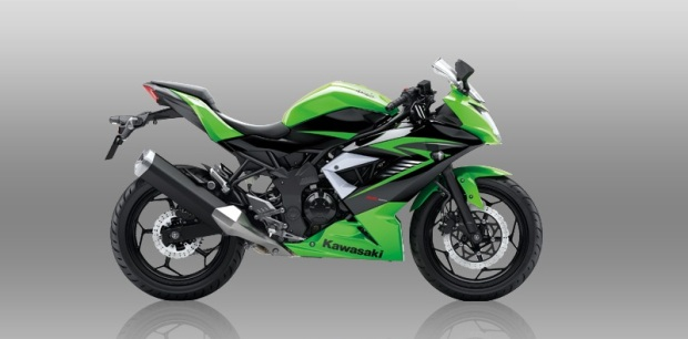 Kawasaki ninja rr mono 250