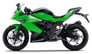 Kawasaki Ninja 250RR Mono